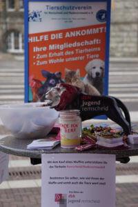 02_2017-09-02-tierheim-spendenaktion-wochenmarkt-14