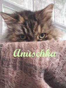 anuschka-b