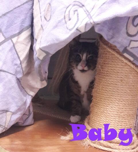 baby-2-b