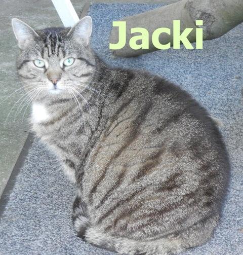 jacki-b