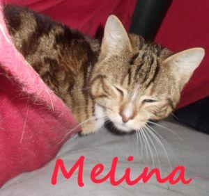 melina-b