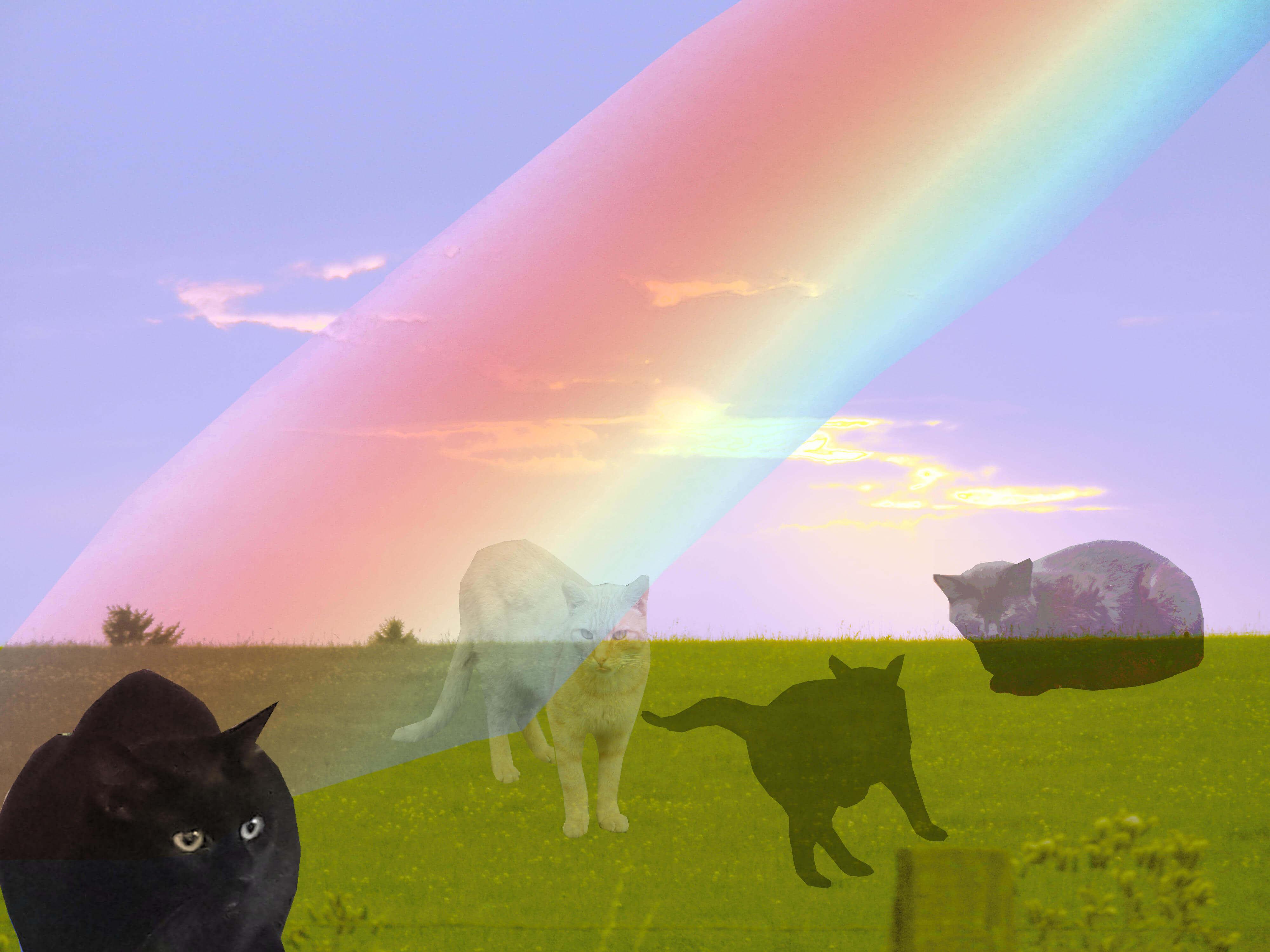 regenbogen-starlight