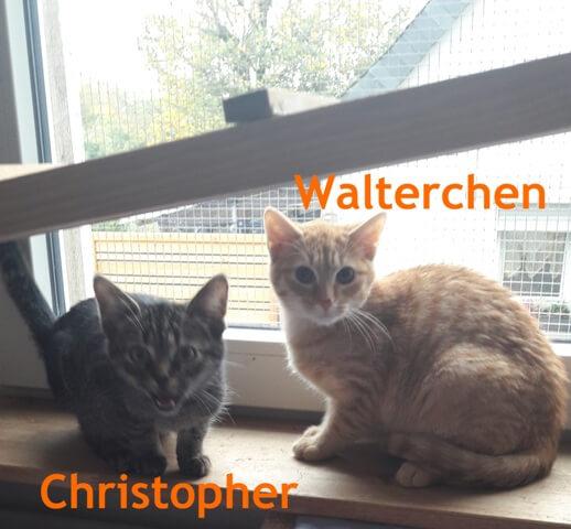walterchen-christopher-b